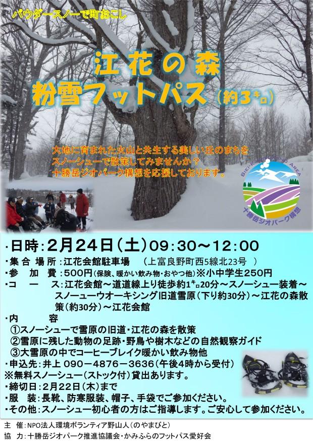 2月24日 江花の森粉雪フットパス