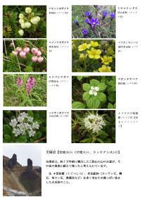 Microsoft Word - 上富良野登山2-03